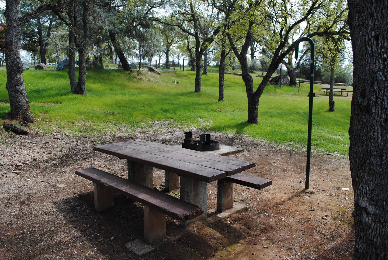 Acorn Campground Site 73 campSlip