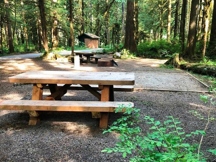 Gold Basin CampgroundSite 91