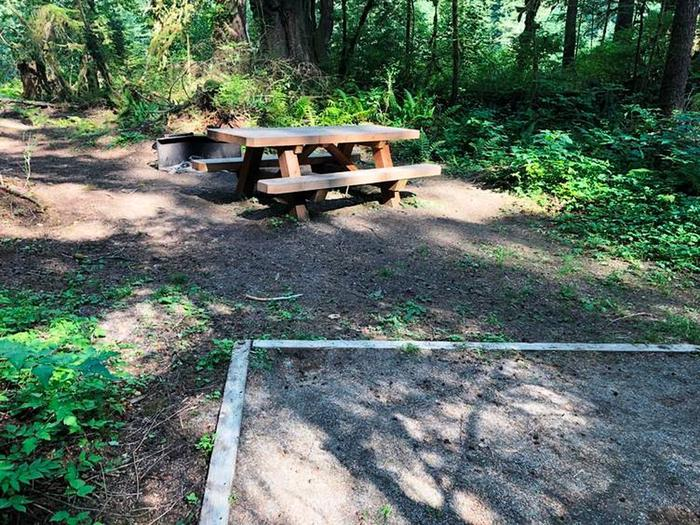 Gold Basin CampgroundSite 94