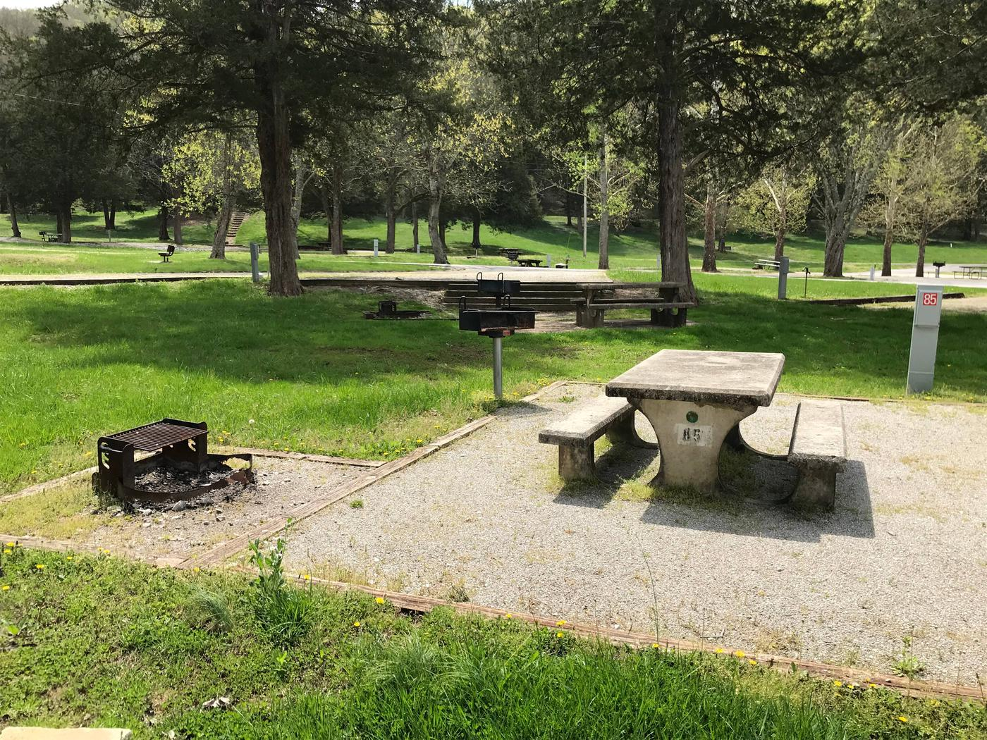 OBEY RIVER PARK SITE #85 CONCRETE TABLE AND FIRE RINGOBEY RIVER PARK SITE #85