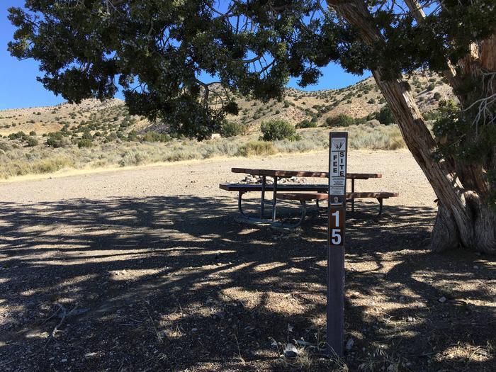 Simpson Springs campsite 015