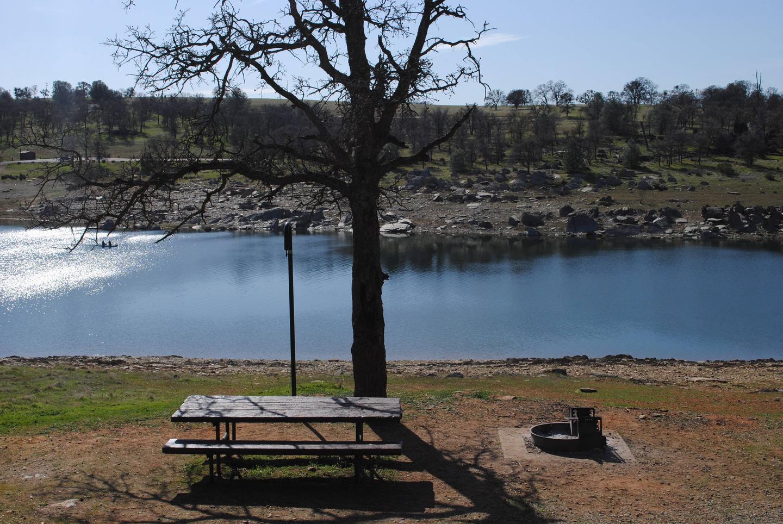 Acorn Campground Site 84 campSlip