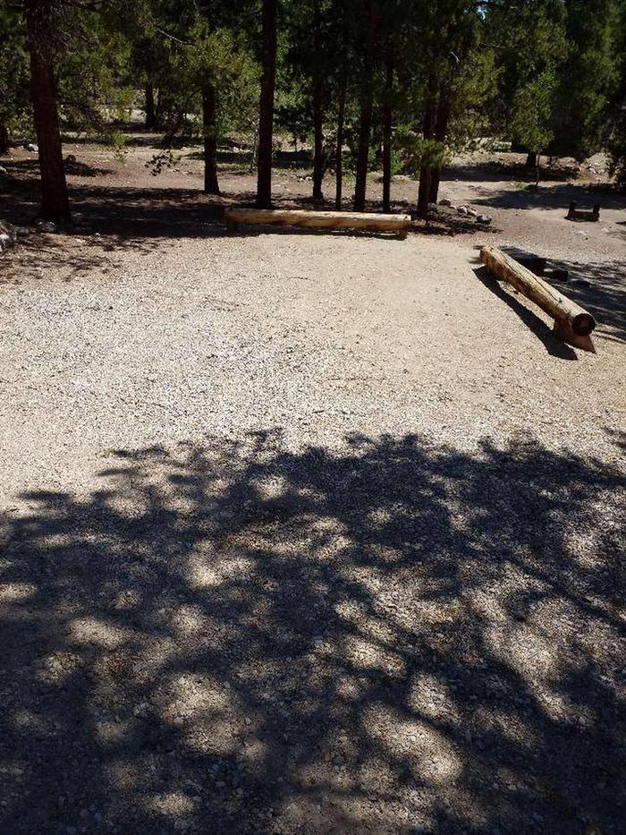 Lakeview Campground, site C6 parking