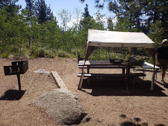 Lakeview Campground, site D5 picnic table and grill