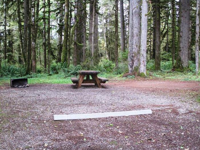 Swift Creek CampgroundSite 12