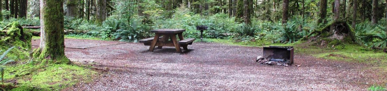Swift Creek CampgroundSite 13