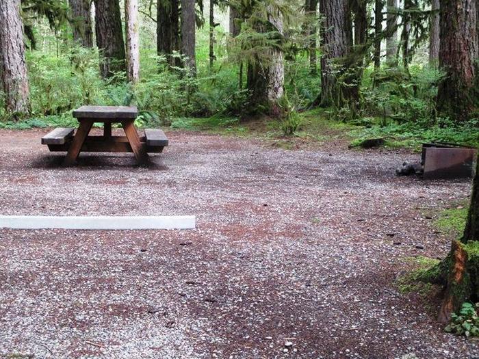 Swift Creek CampgroundSite 14