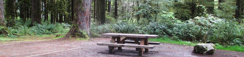 Swift Creek CampgroundSite 17