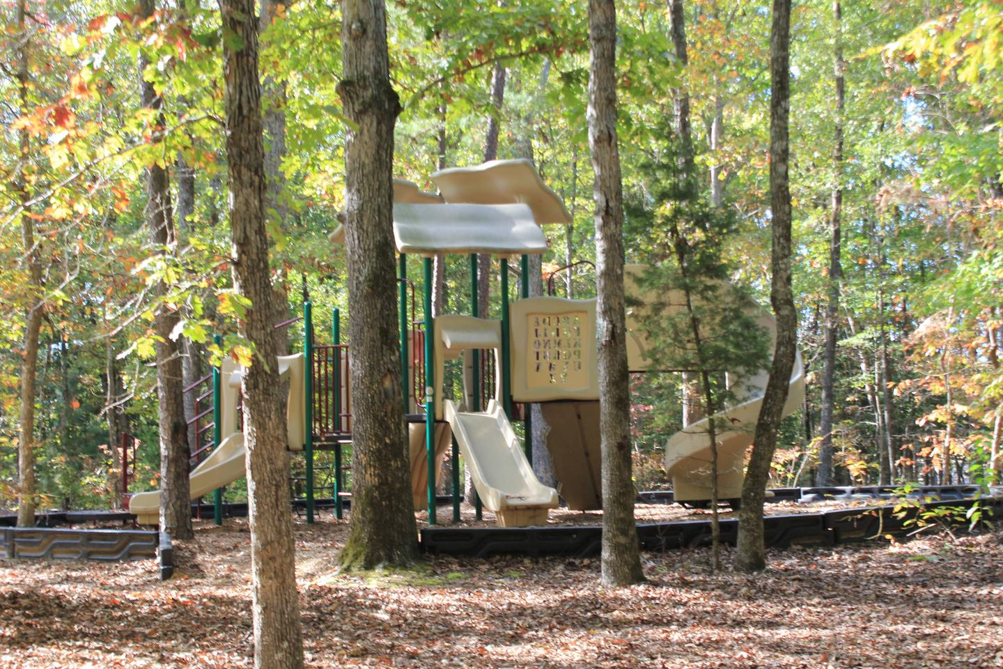 Area D PlaygroundWelcome to North Bend Park! This is the playground located in Area D in North Bend Park.