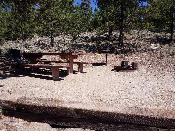 Lakeview Campground, site E2 picnic  and fire ring