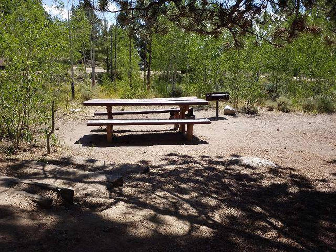 Lakeview Campground, site E4 picnic table and fire grill