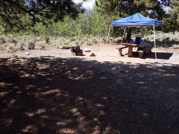 Lakeview Campground, site E6 picnic table and fire ring