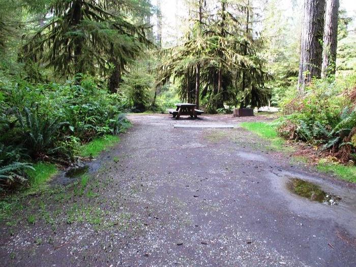 Swift Creek CampgroundSite 20