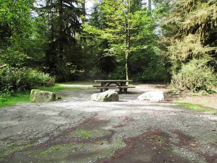 Swift Creek CampgroundSite 21
