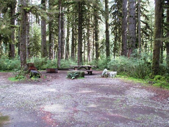 Swift Creek CampgroundSite 24