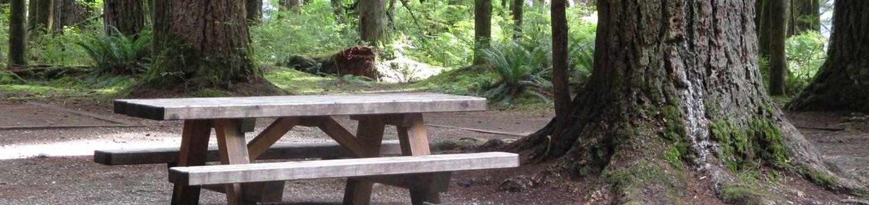 Swift Creek CampgroundSite 27