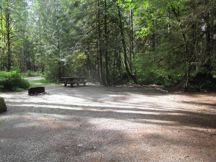 Swift Creek CampgroundSite 28