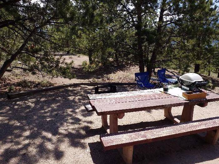 Lakeview Campground, site E13 picnic table 2