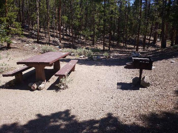 Lakeview Campground, site F1 picnic table and grill
