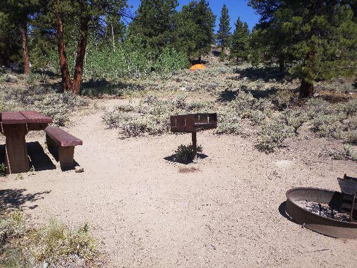 Lakeview Campground, site F2 grill, picnic table, and  fire ring