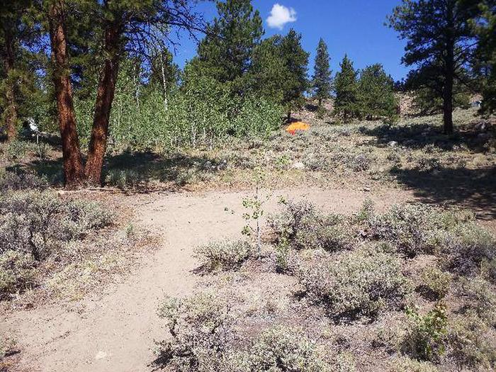 Lakeview Campground, site F2 clearing