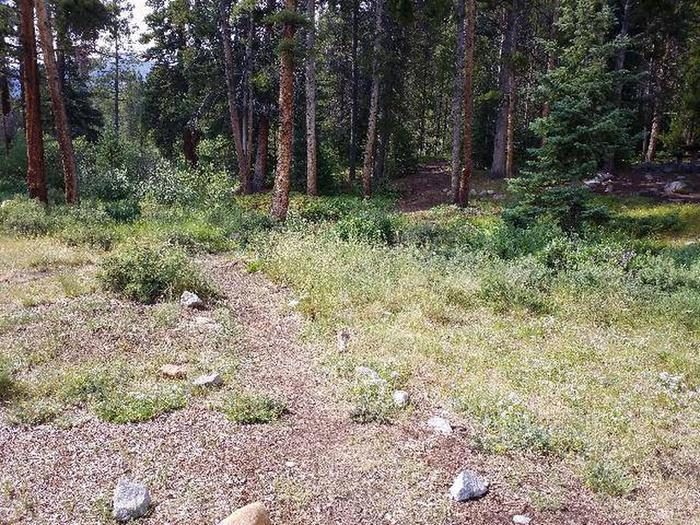 May Queen Campground, site 2 view