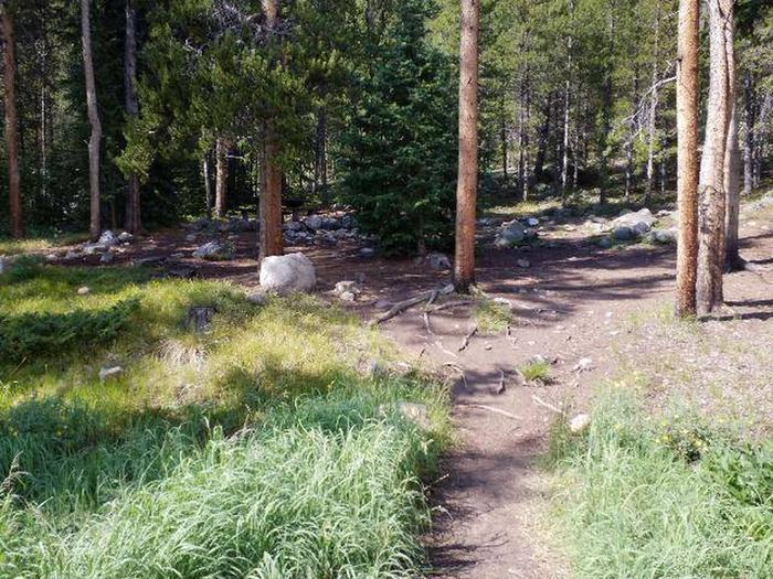 May Queen Campground, site 3 trail