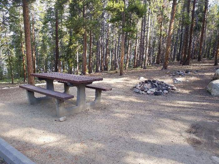 Molly Brown, site 3 table and fire ring