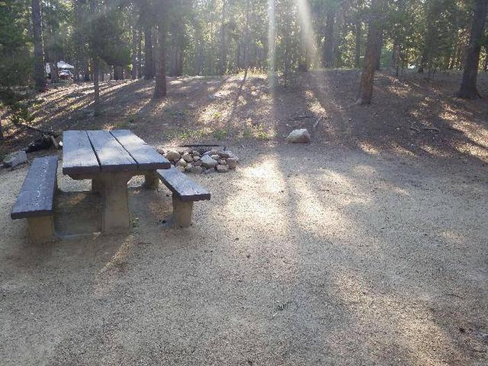 Molly Brown, site 9 picnic table