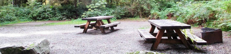 Swift Creek CampgroundSite 35
