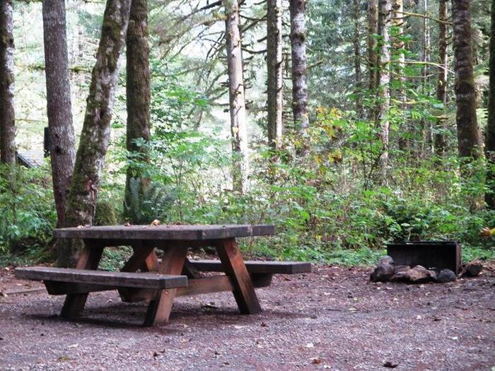 Swift Creek CampgroundSite 44