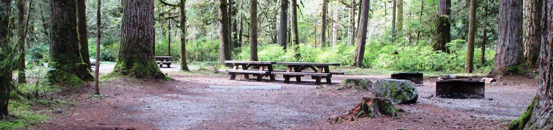 Swift Creek CampgroundSite 45