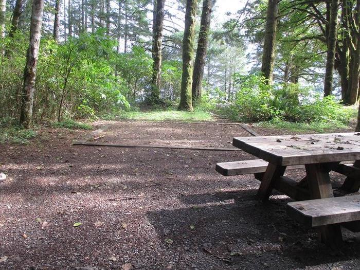 Swift Creek CampgroundSite 46