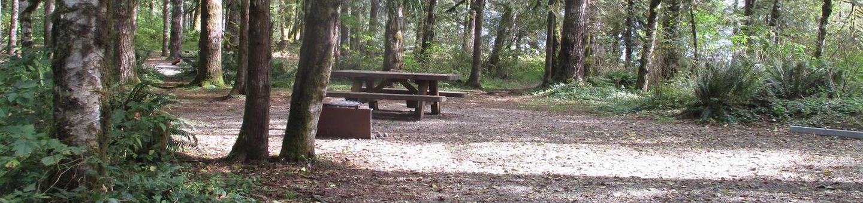 Swift Creek CampgroundSite 49