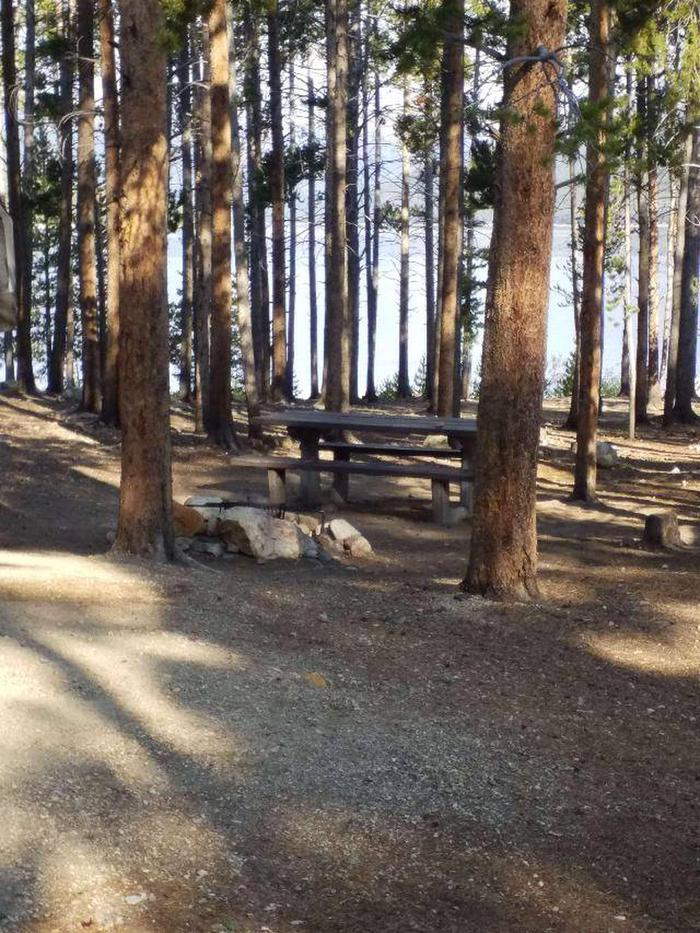 Molly Brown Campground, site 13 picnic table