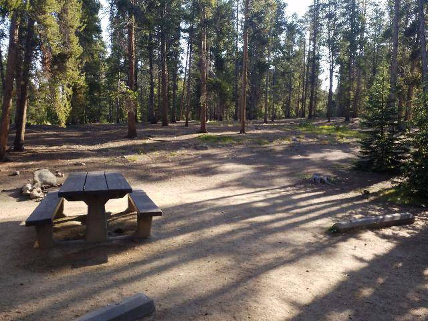 Molly Brown Campground, site 15 picnic table