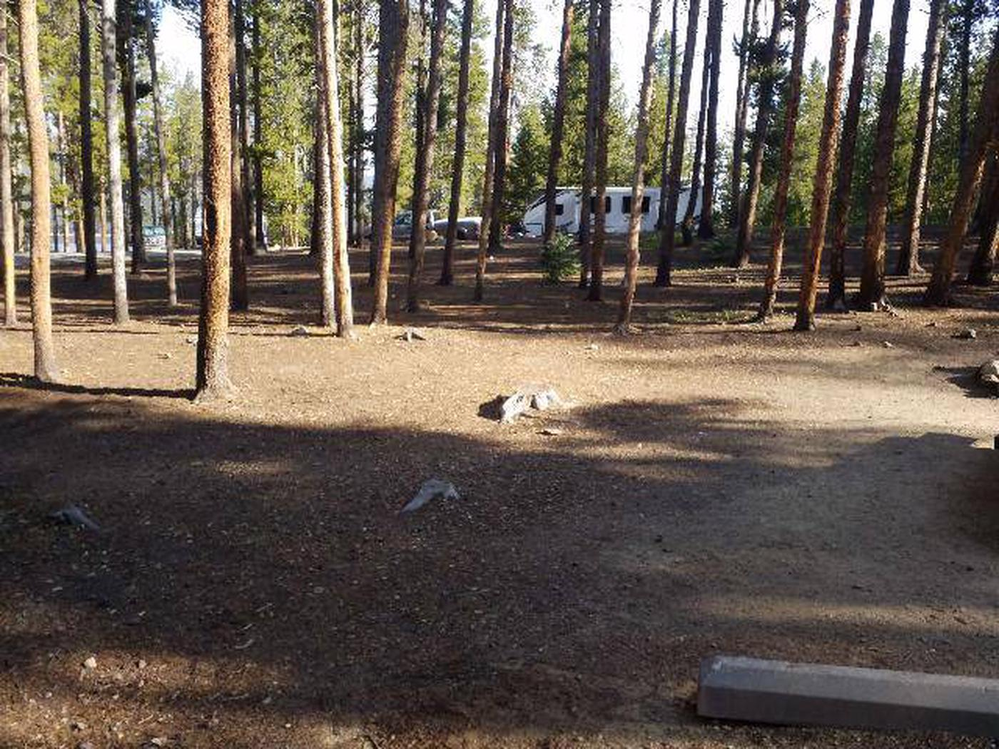 Molly Brown Campground, site 15 clearing