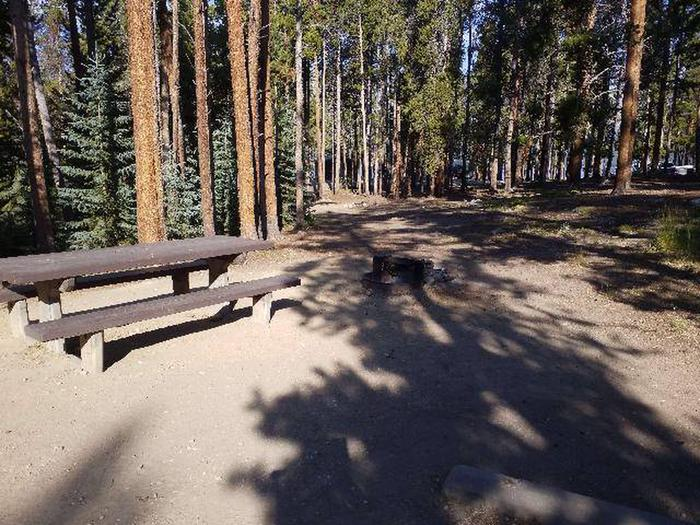 Molly Brown Campground, site 17 picnic table and fire ring
