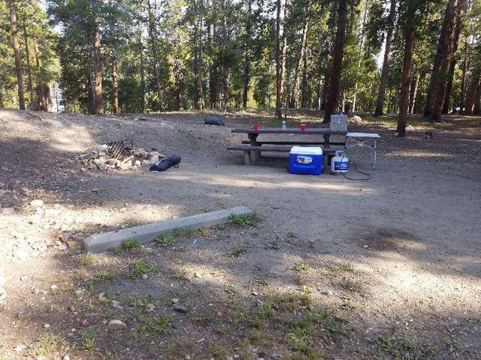 Molly Brown Campground, site 19 picnic table