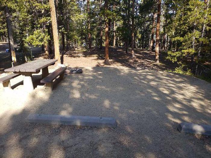 Molly Brown Campground, site 21 picnic table