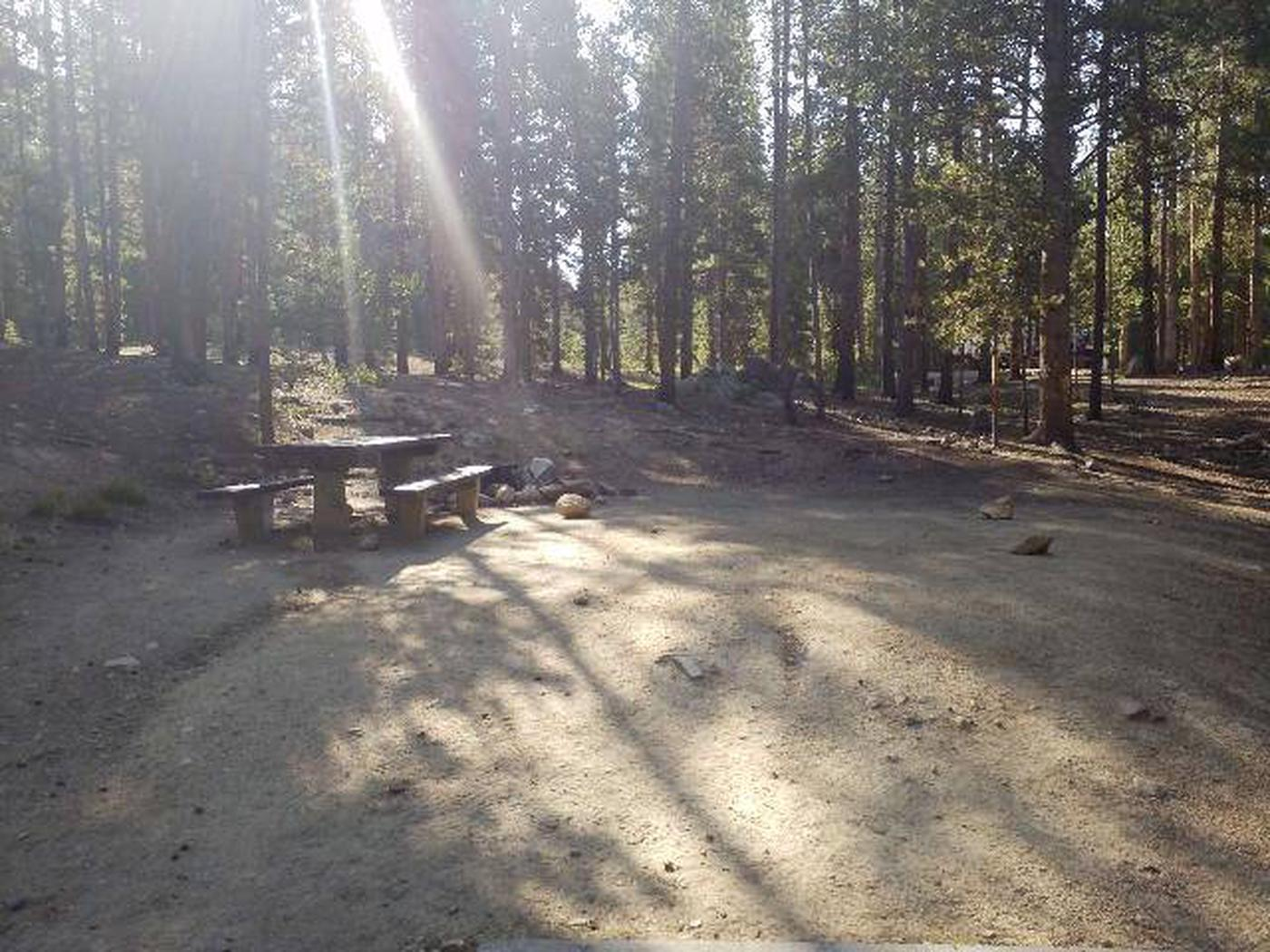 Molly Brown Campground, site 23 picnic table