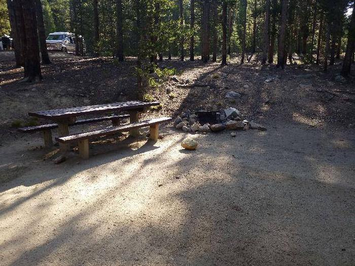 Molly Brown Campground, site 23 picnic table and fire ring