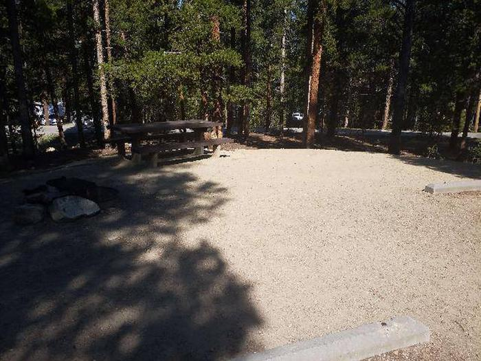Molly Brown Campground, site 25 picnic table
