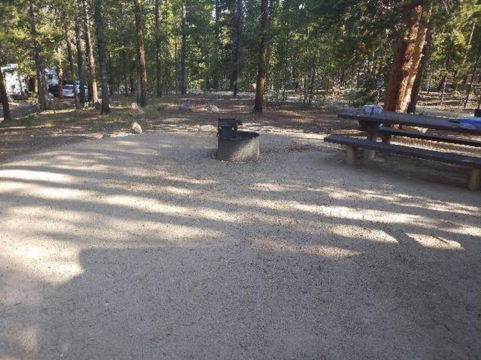 Molly Brown Campground, site 29 picnic table