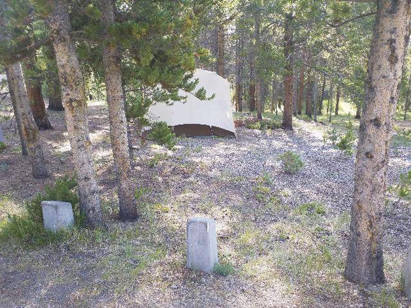 Molly Brown Campground, site 38 tent space