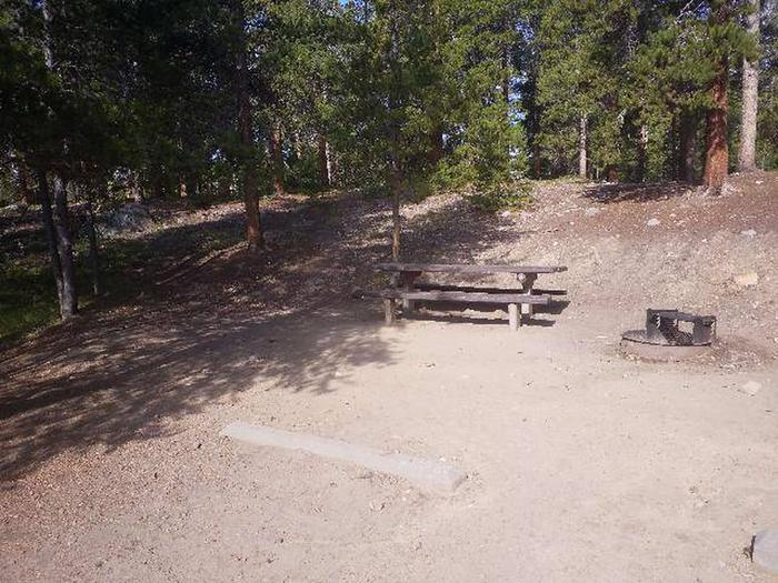 Molly Brown Campground, site 40 picnic table and fire ring