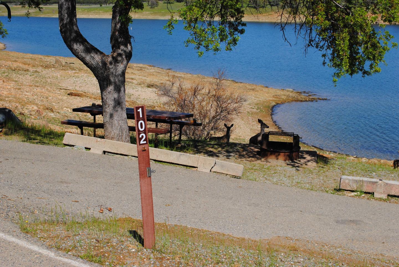 Acorn Campground Site 102Slip