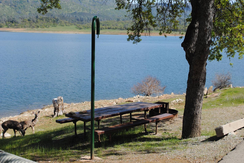 Acorn Campground Site 102 campSlip