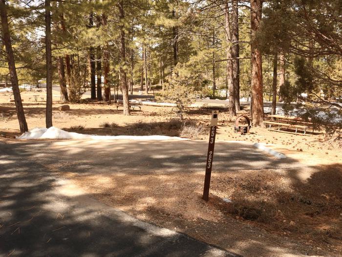 Sunset Campground Site 253Sunset Site 253