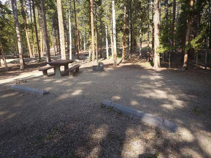 Molly Brown Campground, site 43 picnic table and fire ring